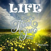 Life - Thank You