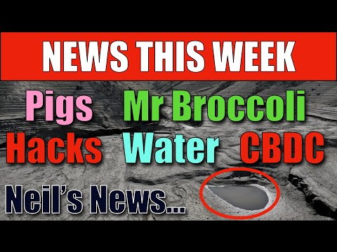 My Weekly News Roundup (Neil's News Network!)