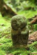 bouddha mousse