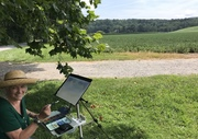 Biltmore field