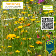 Free Plant Survey Workshop - TCV The Paddock