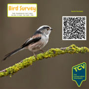 Free Bird Survey Workshop - TCV The Paddock