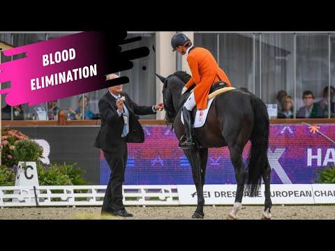 Dressage Disaster: Adelinde Cornelissen Eliminated For Blood - Watch Her Grand Prix Dressage Warmup