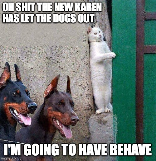 I'm going to behave.