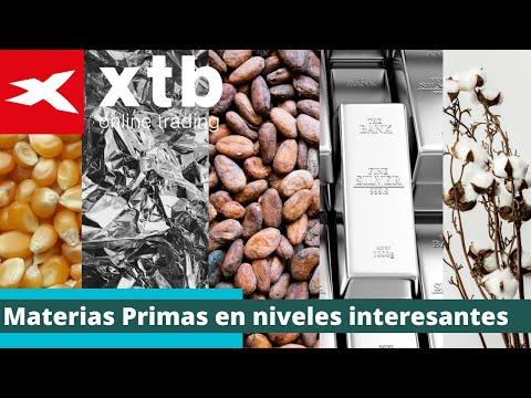 Materias Primas en niveles interesantes - Pablo Gil