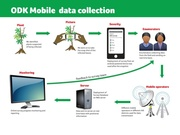 Training Course on Mobile Data Collection Using ODK