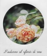 D'autunno al rifiorir di rose