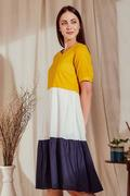 Buy Nery's Dress for Women Online in India