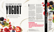 Greek Yogurt - Spread 1