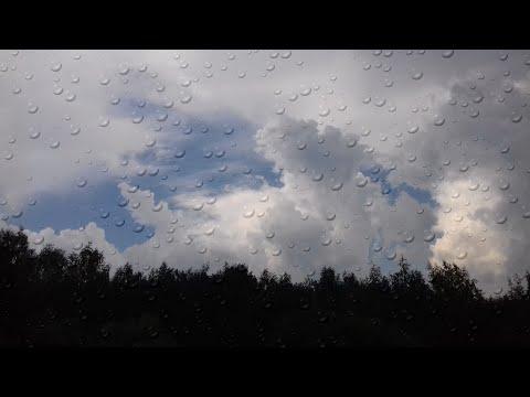 Портал лавандовых небес