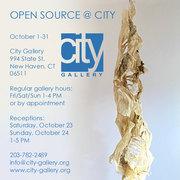 City Gallery Members Celebrate Open Source 2021, a Visual Arts Festival