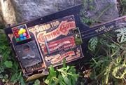 swamp witch guitar  bubble gum 1
