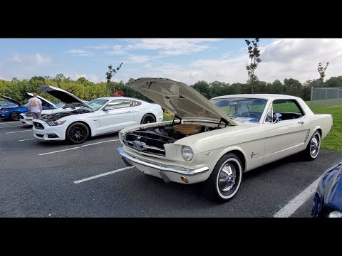 18th Annual Mustang Round Up and Ford Show