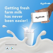 Best Online Cow Milk Home Delivery Service in Delhi NCR