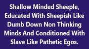 Shallow Minded Sheeple,With Slave Like Pathetic Egos