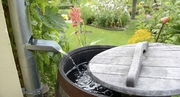 Rain Barrels: Installing A Home Rainwater Catchment System