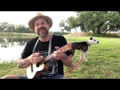 Octopus's Garden (on concert ukulele)