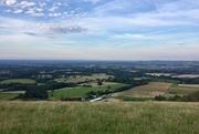 Evening walk - Washington, Chanctonbury circular 11 August 2021