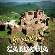 CASTELL DE CARDONA I VISITA AL CENTRE HISTÒRIC