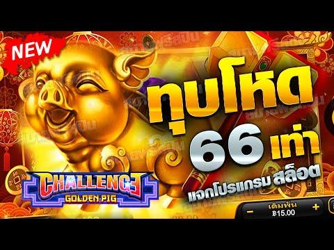 UFABET สล็อต Challenge Golden Pig โบนัสหมูทองคำ ทุบโหด 66 เท่า!!