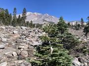 Mount Shasta Sept 2021