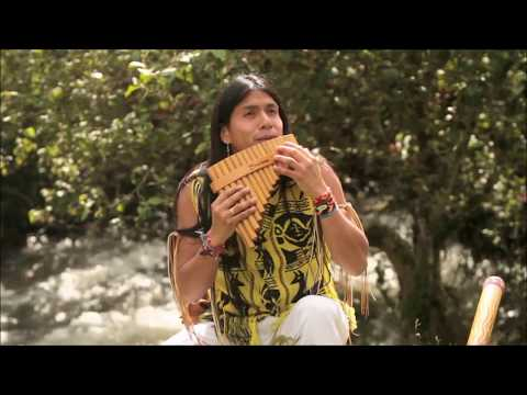 Leo Rojas  - The Sound Of Silence