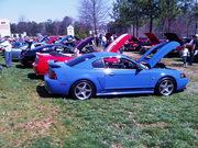 Pony Roundup Mustang & Ford Show - Braselton, GA