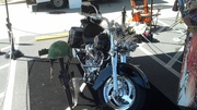 Spring Thaw Bike show- plus Rats! -Shelbyville, TN