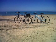Le Tour de Shore