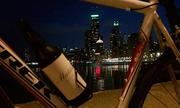 Chicago Critical Lass - March 2013 Ride