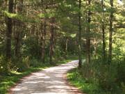 DuPage Forest Preserve Centennial Biking Challenge
