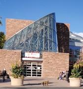 Fox at Main Library 2021.10.14 BPL Boulder Public Library