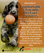 Visit Pet Wellness Center Abbotsford for your pet's annual health examination