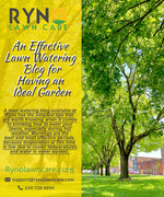 Smart and effective lawn watering tips