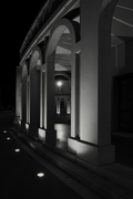 Tresigallo di sera