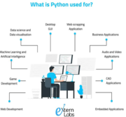 If you are looking to hire python developers in USA