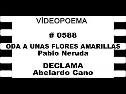 0588 21 10 19 ODA A UNAS FLORES AMARILLAS   Pablo Neruda