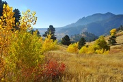 Fall color on the Sanitas Valley trail
