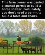 Horse-shelter