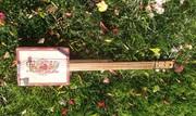 New CBB.   5 string banjo