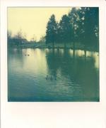 2011-12 parco amendola