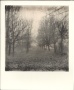 Countryside - 3