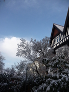 The Buddhist House in snow