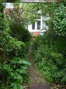 The Buddhist House garden