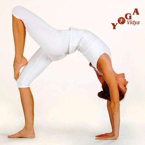 Yoga-Kongress