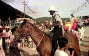 Police in the Savannah - Carnival 1975