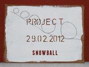 SNOWBALL MAIL-ART CALL